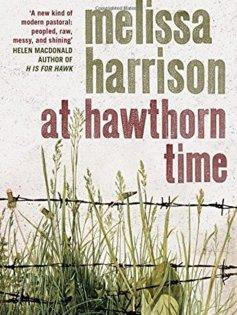 hawthorne - Copy